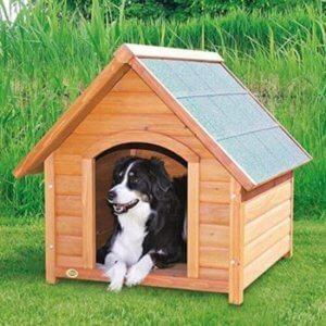 Hundehütte Holz